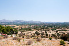Cretan landscape with olive trees. Greece. Stock Photos