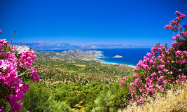 Crete. Amazing landscape of Crete with beautiful flowers Stock Photo