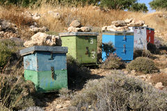 Crete / Beekeeping. A behive on Crete / Greece Royalty Free Stock Photos