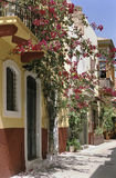 Crete flowered street. On a sunny day, a pedestrian street flowered with bougainvilleas in Rethymnon, Crete island Stock Photos