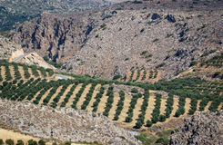 Crete landscape, Greece Royalty Free Stock Image
