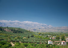 Crete olive tree fields. Panoramic view of greek, cretan, mountain landscape. Mountains, houses and olive tree fields Stock Images