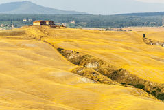 Crete senesi, characteristic landscape in Val d'Orcia Stock Photo