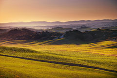 Crete senesi, rolling hills on sunset. Rural landscape near Sien Stock Image