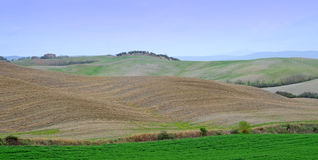 Crete senesi, Tuscany Stock Photography