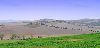 Crete senesi, Tuscany Stock Photos