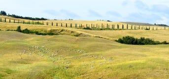Crete Senesi (Tuscany) zdjęcia stock