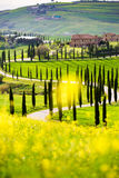 Crete senesi, Tuscany fotografia stock