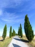 Crete Senesi (Tuscany, Italy) Stock Image