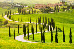 Crete Senesi, Tuscany. Val d`Orcia, Tuscany, Italy. A lonely farmhouse with cypress trees standing in line in foreground Stock Image