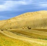 Crete Senesi Tuscany, Włochy (,) Zdjęcie Stock
