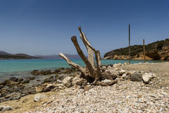 The Crete stony beach Stock Photos