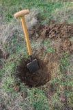 Creusement d'un trou sur la pelouse pour l'usine images libres de droits