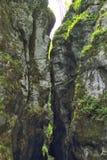 Crevass в ущелье Tolmin, Словении Стоковые Изображения RF