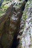 Crevasse de roche Images libres de droits