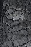 Crevasses et fissures dans une route de rue d'asphalte photographie stock libre de droits