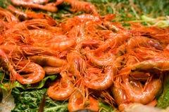Crevette au marché de poissons Images stock