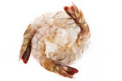 Crevette crue Photographie stock libre de droits