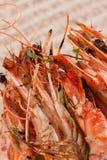 Crevette d'écrevisses de crevettes roses Images libres de droits
