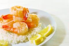 Crevette de Culry sur le riz blanc Images stock