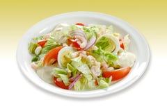 crevette de salade Images stock