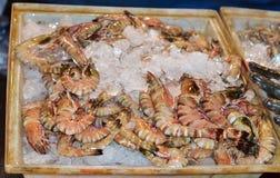 Crevette fraîche énorme vendue sur la glace Image stock