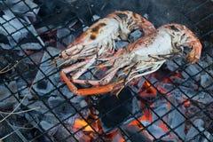 Crevette fraîche grillée sur le gril flamboyant Photo libre de droits