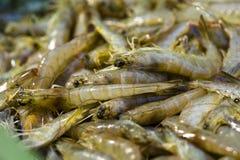 Crevette, nourriture délicieuse Photo libre de droits