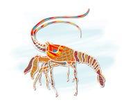 Crevette, peinture décorative Illustration de Vecteur