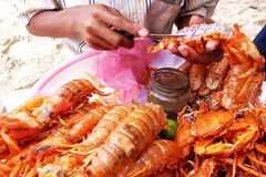 crevette rose cambodgienne Image libre de droits