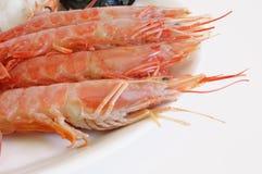 crevette rose de Paella d'ingrédients Photographie stock libre de droits