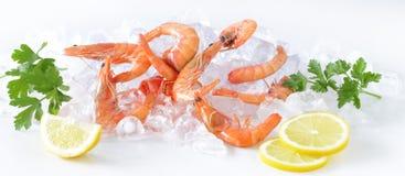 Crevette sur la glace avec le citron Image libre de droits