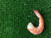 Crevette sur les fruits de mer verts de fond Image libre de droits
