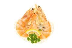 crevettes Arkivfoton