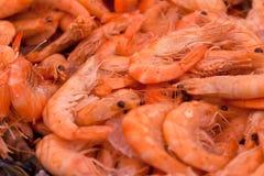 Crevettes Images libres de droits