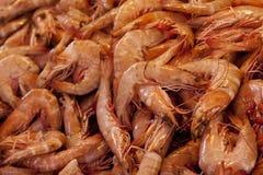 Crevettes Photos stock