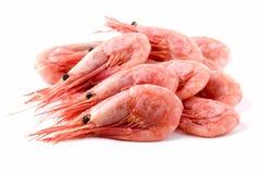 Crevettes Images stock