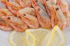 Crevettes avec de la sauce image stock