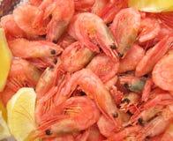 Crevettes avec le citron Image stock