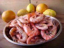Crevettes bouillies prêtes à servir Image stock