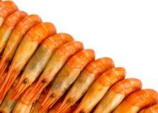 Crevettes cuites Photo libre de droits