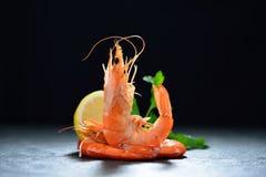 Crevettes cuites, crevettes roses Photographie stock