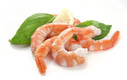 Crevettes d'eau chaude photo libre de droits