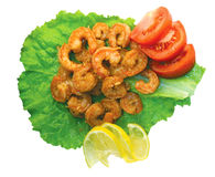 Crevettes d'isolement Image libre de droits