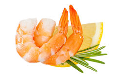 Crevettes d'isolement Photos stock