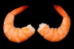 crevettes d'isolement sur un fond arrière Vue supérieure photographie stock
