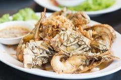 Crevettes de mante frites Image stock