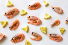 Crevettes et citron bouillis Images stock