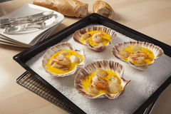 Crevettes et festons en sauce à safran Photo libre de droits