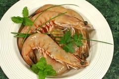 Crevettes fraîches 1 Image libre de droits